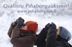 pihabongaus[1]